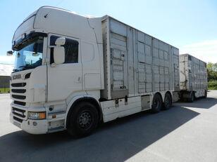 SCANIA R560 livestock truck + livestock trailer