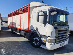 SCANIA P livestock truck